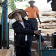 Chinese timber business in Mozambique (Photo: Mike Goldwater)