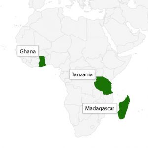 IIED is convening dialogue processes in Ghana and Tanzania, and supporting GIZ in Madagascar (Image: IIED)
