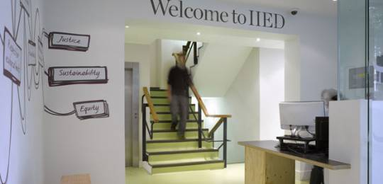 A number of roles with IIED are currently being advertised (Photo: IIED)