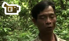 Justice in the forests: Vietnam