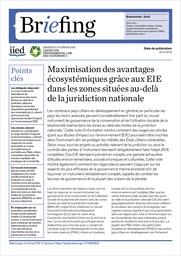 Maximisation des avantages écosystémiques grâce aux EIE dans les zones situées au-delà de la juridiction nationale