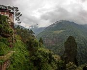 Bhutan has committed to remain carbon neutral, mainly thanks to its high forest carbon sequestration capacity. Some people say that trees in Bhutan have legal rights, referring to the constitutional mandate for 60% of our land area to remain forested for all time. (Adam Brill, Creative Commons via Flickr)