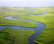 A coastal river system seen from above
