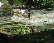A partially obstructed drain in Gangtok city, Sikkim (Photo: David Dodman/IIED)