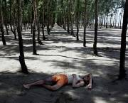 A Bangladeshi fisherman sleeps under a tree, one of thousands planted by the government in an attempt to slow tidal erosion and shield against winds as the country. As countries take such measures to tackle climate change, negotiators prepare for the road to Paris and COP21 (Photo: Espen Rasmussen/PANOS)