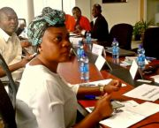 Francophone negotiators sitting around a table (Photo: UNITAR)