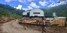 A community-owned Mexican sawmill in Oaxaca (Photo: Duncan Macqueen)
