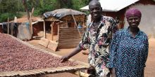 Two forest farmers from Ghana, including the head of a local community forest group, alongside some cocoa beans (Photo: Duncan Macqueen/IIED)