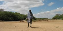 Resource scouts such as Abdelkader, pictured in the Ewaso Ng'iro river bed, Isiolo County, gauge how best to use dry-season grazing areas (Photo: Caroline King-Okumu/IIED)