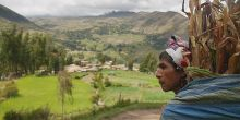 A farmer in the Potato Park, Peru (Photo: Adam Kerby)