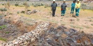 A stone gabion constructed to control erosion across a gully in the Namaqualand region. (Photo: Halcyone Muller / Conservation South Africa)