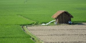 Pump irrigation on a farm in Cooch Behar, in the Indian state of West Bengal (Photo: ICIMOD Kathmandu, Creative Commons via Flickr)