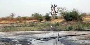 The Saloum Delta Biosphere Reserve in Senegal (Photo: El Hadji Ballé Seye/UICN-Sénégal)