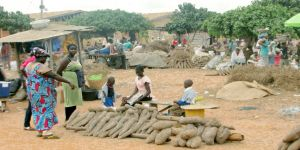 Ejura Market in Ghana is an important centre for farmers selling their yam crops (Photo: IITA)