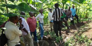 Field visit as part of the Mountain Ecosystem-based Adaptation project, Mount Elgon, Uganda (IUCN)