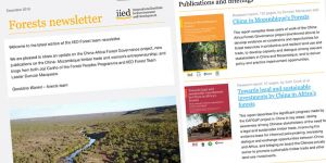 The December 2018 edition of IIED's forests newsletter