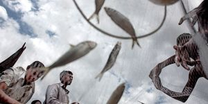 Fishermen in Bangladesh collecting the day's catch (Photo: Espen Rasmussen/PANOS)