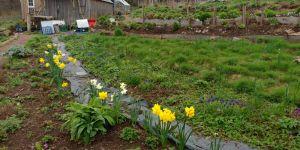 A small farm near the Scottish town of Crief