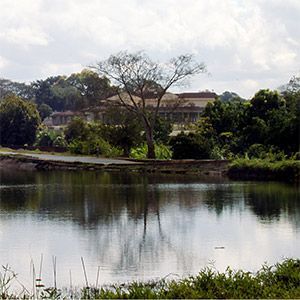 "Lilongwe's residents call it the ""Garden City"" because of its many green spaces (Photo: Gome Jenda)"