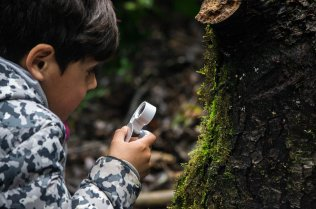 A child looks at moss through a magnifying glass