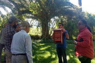 A man shows a bat box to other men