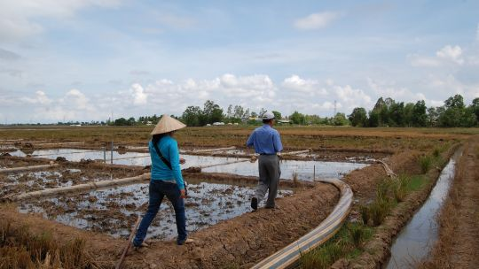 This project was designed improve adaptive capacity of rice production systems in the Mekong Delta in Vietnam (Photo: V. Meadu, CCAFS, Creative Commons via Flickr)