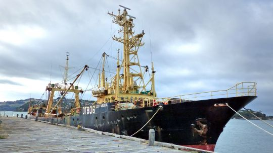 In 2008 the captain of this deep-sea fishing trawler was convicted of illegal fishing and providing misleading information about catches (Photo: Bernard Spragg.NZ, Creative Commons via Flickr)