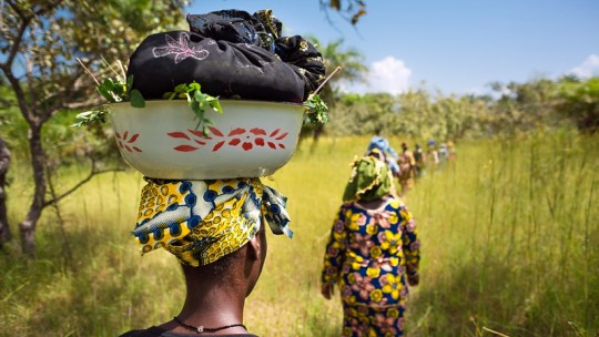 Line of women walking through a field. One carries a basket on her head.