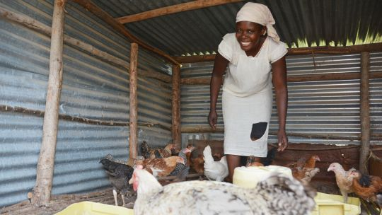 Local community-based funds can help farmers in climate-sensitive areas to diversify. Mercyline Atieno got a loan for her poultry business in Kenya (Photo: T.Muchaba/CCAFS, Creative Commons via Flickr)