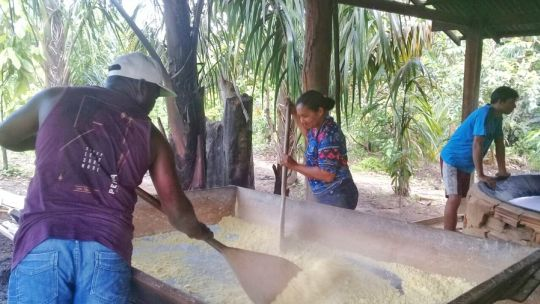 This Quilomboa community was supported to produce flour from manioc plants - also known as casava. (Photo: Dema Fund)