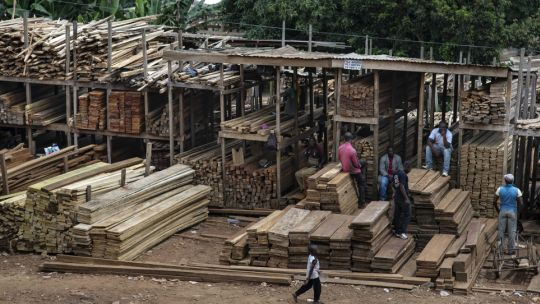 A timber market in Yaoundé